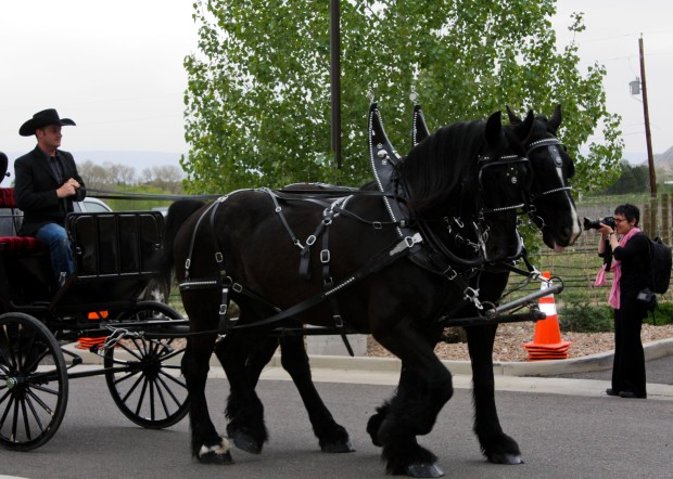 Photo By: JR's Carriage Service